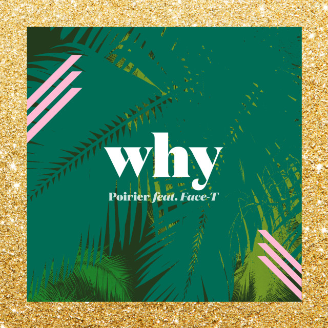 Poirier_Why_cover_art_FINAL